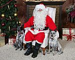 Dusty_and_Roo_Santa_Paws_2009_Crop.JPG